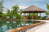 View of nice tropical pool with exotic hut on the back — Stock Photo