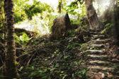Stairstairstair — Stockfoto