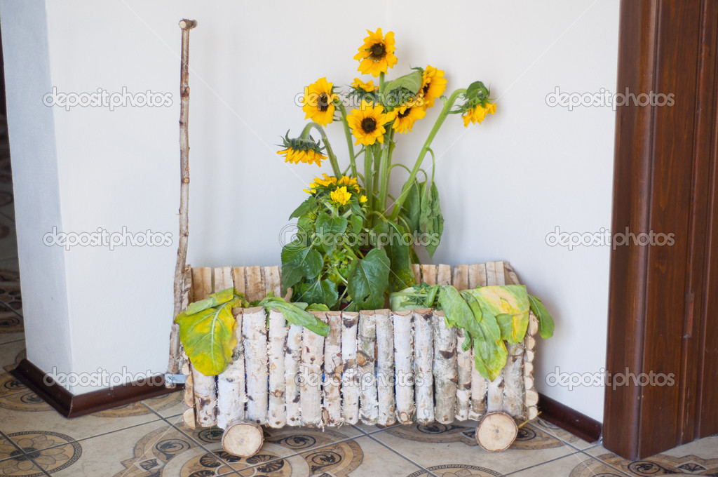 Decorative wagon constructed from pieces of birch — Stock Photo #5876684