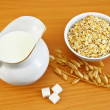 Ingredients for oatmeal — Stock Photo