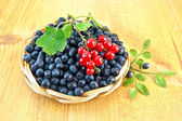 Blueberries with sprigs of red currants on the board — Stock Photo