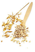 Rolled oats in a spoon — Stock Photo