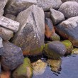 Rocky shore of Norwegian fjord - Stock Photo