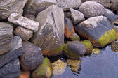 Rocky shore of Norwegian fjord — Stock Photo
