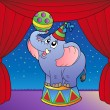Cartoon elephant on circus stage 1 - Stock Vector