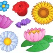Various flowers set - Stock Vector