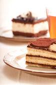 Del av self-made tiramisu dessert — Stockfoto