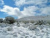 Vinterlandskap, snö natur miljö. träd, berg — Stockfoto