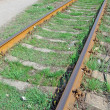 Rusty train rail and green grass — Stock Photo