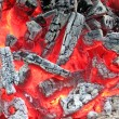 Stock Photo: Campfire with hot coal, fire closeup.