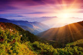 Summer landscape in mountains — Foto de Stock