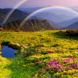 Mountain landscape with Flowers and a rainbow - Stock Photo