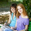 Stock Photo: Two girlfriends doing homework at the park.