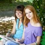 做作业在公园的两个女朋友 — 图库照片