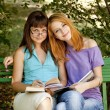 Two girlfriends doing homework at the park. — Stok fotoğraf