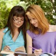 Two girlfriends doing homework at the park. — Stockfoto