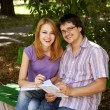 Royalty-Free Stock Photo: Two students at outdoor doing homework.