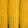 Natural corn without chemical additives and genetically modified — Stock Photo #6519753