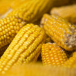 Natural corn without chemical additives and genetically modified — Stock Photo #6519770