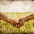 Farmers handshake in green wheat field. — Foto de Stock
