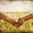 Farmers handshake in green wheat field. — Photo