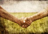 Farmers handshake in green wheat field. — ストック写真