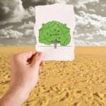 Tree in desert idea — Stock Photo