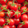 Cherry Tomato - Stock Photo