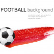 Soccer ball — Stock Photo #6032155
