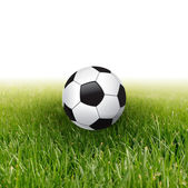 Soccer ball in green grass — Stock Photo
