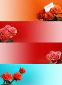 Banner web con rosa — Foto Stock
