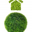 Grass sphere and grass house — Stock Photo