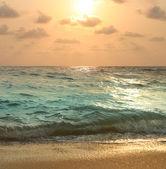 Gold sunset on sea — Stock Photo