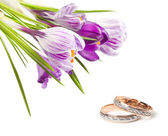 Wedding rings and flower — Stock Photo