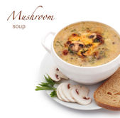 Mushroom soup — Stock Photo