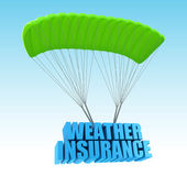 Weather Insurance 3d concept illustration — Stock Photo