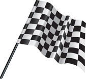Checkered, chequered motor racing flag — Stock Vector