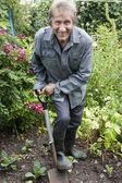 Man gardening and smiling at camera — Stock Photo