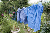 Washing line on a cottage garden in summer — Stock Photo