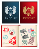 Designs for a general not country specific passport — Stockvector