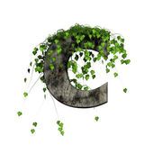 Green ivy on 3d stone letter - c — Stockfoto