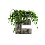 Green ivy on 3d stone letter - e — Stock Photo