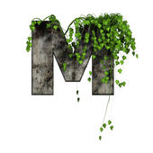 Green ivy on 3d stone letter - m — Stock fotografie