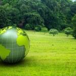 3d glossy globe in a green prairie — Stock Photo #6069827