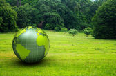 3d glossy globe in a green prairie — Stock Photo
