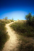 Road to the beach — Stock Photo