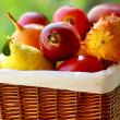 Basket of tropical fruits. — Stock Photo