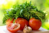 помидоры, чеснок и зеленый кинзы. — Стоковое фото