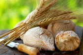 Portuguese bread and spikes of wheat. — Stock Photo