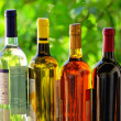 Assortment of portuguese wine bottles. - Stock Photo